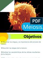 ciclocelularmeioisis-140326085410-phpapp02 (1).ppt