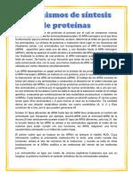 Mecanismo de Síntesis de Proteínas