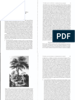 Larson Hacia el mestizaje.pdf