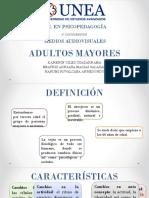 ADULTOS MAYORES.pptx