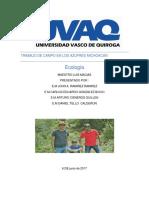 Ecologia de  Los Azufres  Michoacan  Mex Por John , Carlos , Arturo y Daniel .