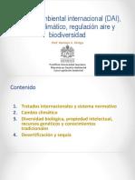 06 Derecho Ambiental Internacional Cambio Climático y Biodiversidad (Prof. Gustavo Ortega) 1ra Parte