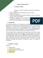 BqF Práctica II