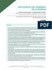07_infeccion_vias_urinarias.pdf
