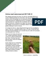 Rapport 2017-08-12 Gröna Mad NR
