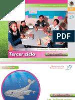 tercer-ciclo-cuadernillo-1.pdf