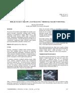 riblke.pdf