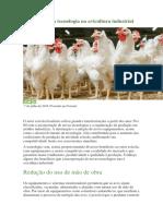 4 Benefícios Da Tecnologia Na Avicultura Industrial
