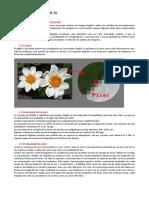 Tema 2. Documentacion 2D