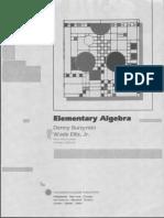 Elementary Algebra Burzynski 1989