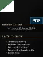 Anatomia Dentária 2011