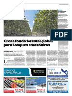 Crean Fondo Forestal Global Para Bosques Amazónicos