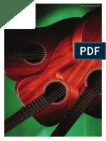 15-WASHBURN Brochure Acoustique 2010-2011   Guitars