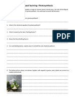 flipped learning photosynthesis