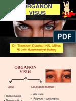 Anatomi Organon Visus Dr.tomy