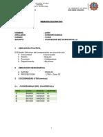 mimoria discriptiva.docx