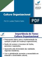 Cultura Organizacional (1).pptx