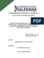 Estudio Para Determinar Las Perdidas de Energía Del Alimentador 124 Perteneciente Al Sistema de Distribución de La Empresa Eléctrica Azoguez