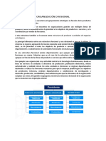 Organización Divisional - Informe