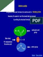 06 Amino Acid