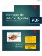 10. Histologia de Sistema Digestivo