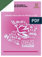 Libro Cultura Para La Paz_publication