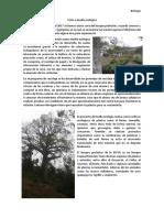 Visita a huella ecológica.docx