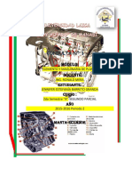 Partes internas de un motor de combustión a gasolina