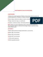 ensayosaludocupacional-120919231738-phpapp02.docx
