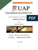penal monografia.docx