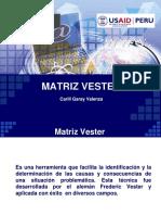 -Matriz-Vester.pptx