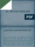 elapgarfamiliar. pptx.pptx