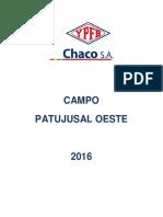 13_PJO.pdf