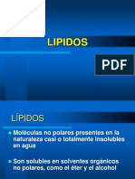 lipidos