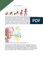 infancy and toddlerhood period of development eportfolio
