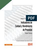 Indicadores de Calidad y Rendimiento de Procesos. 2007