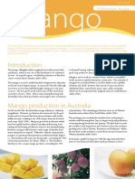 10-127 - cs20-mango-web (1) (1).pdf