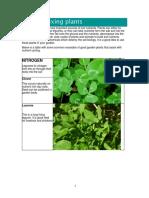 nutrition_fixing_plants_cmp.pdf