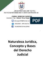 03 Naturaleza Jurídica Del Der Judicial