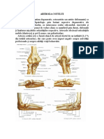 artroza cot.doc