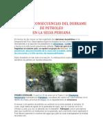 Causas y Consecuencias Del Derrame de Petroleo