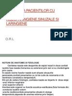 Ingrijirea pacientilor cu infectii nozofaringiene,sinuzale si laringiene.pptx