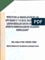 Uso de Aposito Hidrocoloide Hidrolizado en Upp Grado II y III-1