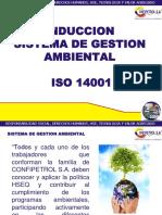 INDUCCION..PARA EL SENA.pdf