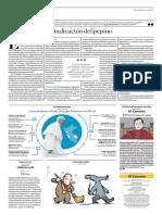 Las Actividades Oficiales Del Papa Francisco en El Perú