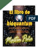 BioQuantum- Martin Peña