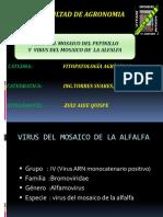 Virus Del Mosaico de La Alfalfa Ya