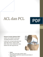 ACL dan PCL