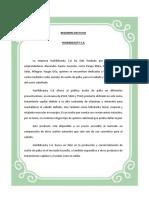 Resumen Ejecutivo Completo aceite de PALTA