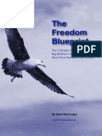 Freedom Blueprint
